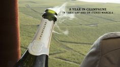 A Year in #Champagne - Official Trailer. #Wine