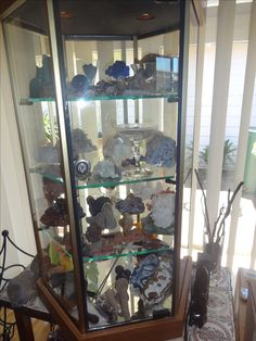 Display case filled with crystals and rock specimens Crystal Collection Display, Charity Shop Display Ideas, Displaying Collections, Display Case, China Cabinet, Fossil, Rock, Crystals, Storage