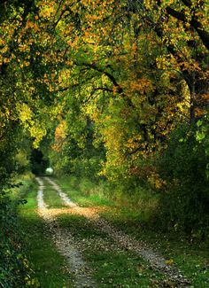 take me home, country roads....