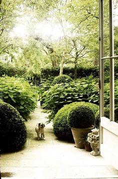 getting a breath of fresh air. Love Garden, Dream Garden, Garden Modern, Formal Gardens, Outdoor Gardens, Garden Landscape Design, Garden Landscaping, Pot Jardin, White Gardens