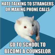 Psychology Rat...this is me to a tee