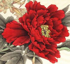 New Tattoo Flower Peony Tat Ideas Asian Flowers, Oriental Flowers, Chinese Flowers, Japanese Flowers, Japanese Painting, Chinese Painting, Chinese Art, Japanese Art, Botanical Art