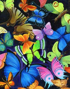 Born Again by Nancy Cupp (700×900) colorful, butterflies