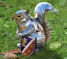 Sir Squirrel