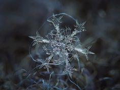 個々の雪片の驚くべきマクロ撮影[10写真]