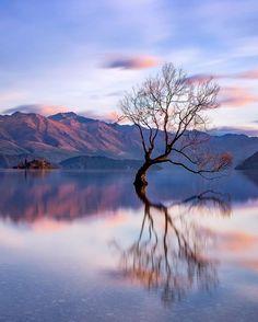 Portofolio Fotografi Pemandangan Alam - The Breathtaking Nature Landscapes of New Zealand  #LANDSCAPEPHOTOGRAPHY, #PHOTOGRAPHICSCENERY