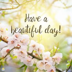 Good morning image with spring flowers. Happy Good Morning Quotes, Beautiful Morning Messages, Good Morning Cards, Good Morning Beautiful Images, Happy Morning, Good Morning Coffee, Good Morning Picture, Good Morning Flowers, Good Morning Messages