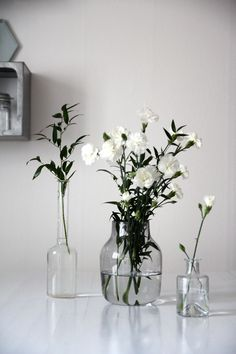 Shop from a wide range of wooden, ceramic flower vase, metal and glass flower vase . Long Metal Vase for Living Room, Home White Flowers, Beautiful Flowers, Cut Flowers, Simple Flowers, Green Flowers, Home Decoracion, Inspire Me Home Decor, Deco Floral, White Vases