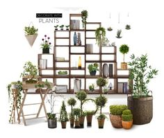"""""""Plants"""" by marionmeyer on Polyvore featuring interior, interiors, interior design, Zuhause, home decor, interior decorating, Garden Trading, Crate and Barrel, Ballard Designs und Nearly Natural"""