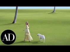 Inside Aerin Lauder's Family's Home in Palm Beach | Celebrity Living | Architectural Digest - YouTube