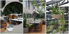 Inspiring projects: Berthelot's Modern Restaurant Design in Bucharest designed by 'Love Colours Studio' - see more at http://www.delightfull.eu/en/inspirations/contract/inspiring-projects-berthelots-modern-restaurant-design-bucharest/