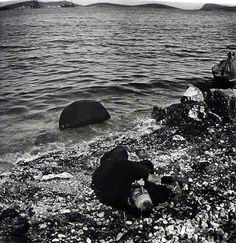 The body of a deceased male along the shores of Phocea, 13 June Photo: Félix Sartiaux. In Ancient Times, Ottoman Empire, Persecution, Greece, Europe, Island, History, Water, Outdoor
