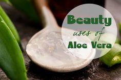 ∆ Aloe Vera...8 Great Beauty Uses of Aloe Vera