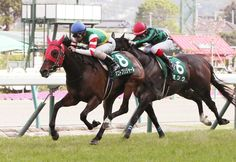 【福島牝馬S】マコトブリジャール下克上V!15番人気が横綱相撲