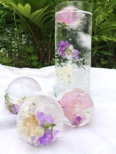Glaçons et fleurs