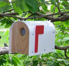 Rustic Mailbox Bird House - Hoover Fence Co.