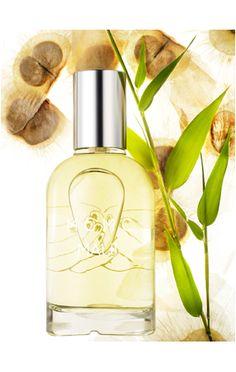 MAUI 40ml eau de parfum