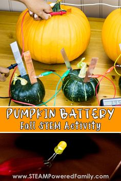 Pumpkin battery science experiment for kids. The perfect Halloween and Fall Harvest science experiment with electricity. Explore how electricity is produced by the fruit (pumpkins and squash) and how to connect the fruit to form a battery to power an LED. A fascinating lesson on the naturally occurring energy around us and how we can harness that for our own use. Visit STEAM Powered Family for all the details! Stem Activities, Educational Activities, Activities For Kids, Electricity Experiments, Science Experiments Kids, Halloween Science, Halloween Ideas, Always Learning, Fun Learning