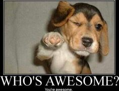 Who is awsome? You are awsome!