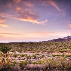 El Paso Texas desert