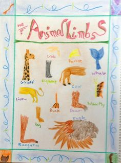 Waldorf ~ 4th grade ~ Human & Animal ~ Animal Limbs ~ main lesson book