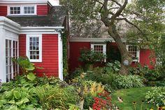 The Practical Herb Garden Information Guide