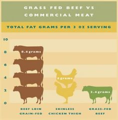 grass fed beef health benefits...