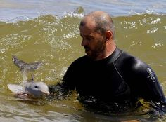 Baby dolphin, saved by kind man