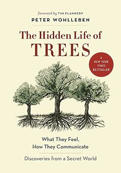 The Hidden Life of Trees : What They Feel, How They Commu... https://www.amazon.es/dp/1771642483/ref=cm_sw_r_pi_dp_x_fEO-xbN5CC58A
