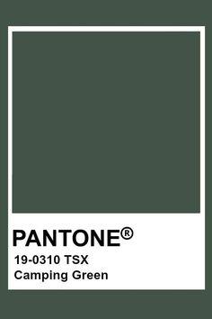 Pantone Camping Green - All About Pantone Colour Palettes, Pantone Color, Pantone Green Colors, Pantone Swatches, Color Swatches, Color Harmony, Color Balance, Logo Color Schemes, Pantone Universe