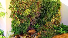 Wall garden, living wall planter, herbs, vegetables, green walls, partition, restaurant decoration, wall partition, outdoor wall decoration, vertical gardening