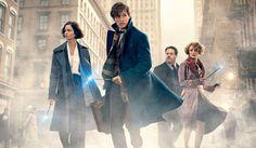 Fantastic Beasts 2 Story Details Revealed as Filming Begins