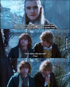 Pippin Lord Of The Rings Quotes