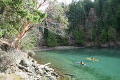 Narvaez Bay British Columbia, Kayaking, Hiking, Camping, River, Explore, Adventure, Places, Islands