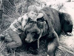 The television series Gentle Ben ran from September 1967 until August show stars a young Clint Howard as Mark Wedloe, and chronicles his adventures with a lovable American black bear named Ben (played by Bruno the Bear). Childhood Tv Shows, Childhood Memories, Ron Howard, Gentle Ben, Tv Vintage, Animal Tv, Vintage Television, Old Shows, Nostalgia