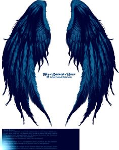 png backed angel wings