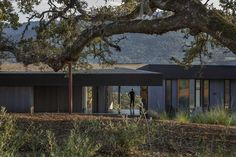 ArchDaily - The Lichen House / Schwartz and Architecture © Richard Barnes Architecture Office, Architecture Photo, Tree Support, Sonoma Valley, California Homes, Modern Exterior, Landscape Design, Building A House, House Architecture