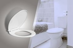 Soft-Closing Toilet Seat
