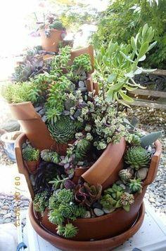 Миниатюрный сад в разбитом горшке
