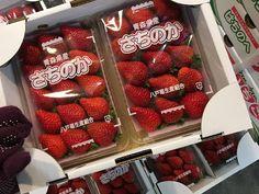 青果物の流通  ソーシャルメディアアグリ「地場活性化」のために: ホワイトデーには「いちご」をどうぞ!