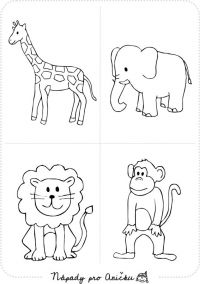 Omalovánky - Zvířata z Afriky Animal Coloring Pages, Coloring Sheets, Coloring Books, Owl Crafts, Preschool Activities, Safari, Kids Church, Teaching Kindergarten, Zoo Animals