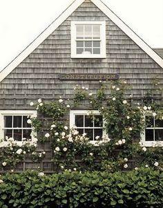 Love shingle sided houses                                                                                                                                                                                 More