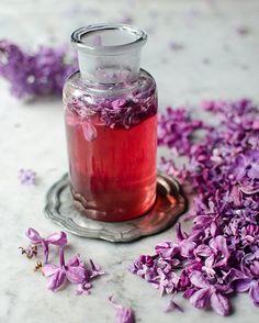 Milujete vůni šeříku? Připravte si z něj luxusní sirup nebo léčivý čaj • Styl / inStory.cz