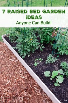 1257 best raised bed gardens images in 2019 gardening tips edible rh pinterest com