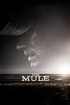 The Mule Gratuit Film Streaming En ligne Regarder!The Mule Film Streaming Gratuit En ligne (Full-Film) Regarder The Mule Streaming VF HD regarder The Mule VF streaming complet film en francais HD en ligne Movies And Series, New Movies, Movies Online, Movies And Tv Shows, Drama Movies, Bradley Cooper, Streaming Hd, Streaming Movies, Venom Film