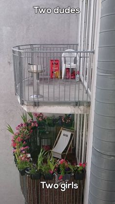 Top: My apartment's balcony guys). Bottom: Our neighbor's balcony girls). Laugh your self out with various memes that we collected around the internet. Haha, Men Vs Women, Bored At Work, Humor Grafico, Man Vs, Pranks, Best Funny Pictures, Random Pictures, Picture Video