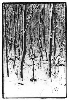 Hainich NP/Thür. winterlich
