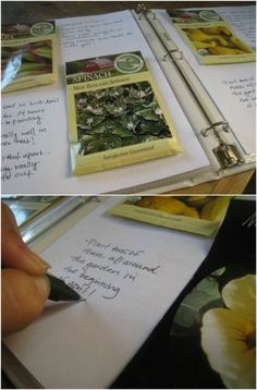 Create a gardening binder … with seed packets