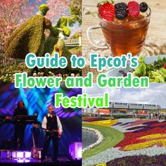 Just updated with 2017 info!  Flower and Garden Festival at Epcot features beautiful topiaries, outdoor kitchens, musical acts, gardening seminars and more. Here's more info and help planning your time there.