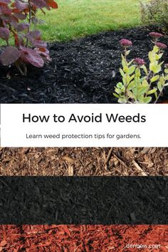 Learn weed protection tips for industrial landscape gardens. When soil is thoroughly covered with mulch, weed seeds never come into direct contact with soil and are not able to germinate. Existing weeds in the soil below the surface are deprived of sunlight and inhibit weed growth. Visit denbow.com for more on landscaping, gardening, and mulch products.